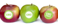 Viewpoint: 'Organic crops are healthier than GMOs,' and 6 other anti-science myths we should forget