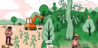 Why grow GMOs? A farmer explains 4 environmental benefits of crop biotechnology