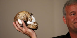 13 discoveries in 2020 that have transformed what we know about human evolution