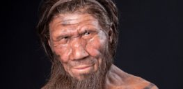 How Neanderthal genes found in most non-Africans impact the health of modern humans