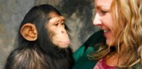 Humans and chimpanzees share 99% of the same DNA. This is the 1% difference