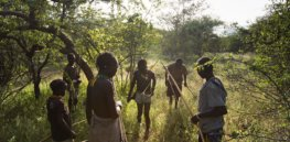 Human behavioral ecology: The tight 'evolutionary embrace' of culture and genes