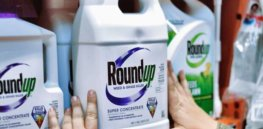 Viewpoint: Glyphosate and cancer—How ideology and bad science turned a safe herbicide into a carcinogen