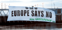 Viewpoint: Europe's double standard—politicians celebrate genetically engineered COVID vaccines, but prohibit use of GM crops