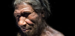 Neanderthals, COVID-19 and you: Exploring how our inherited genes are harming us and could have decimated our hominid ancestors