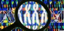 20 year anniversary of the mapping of the human genome: What does the future hold?