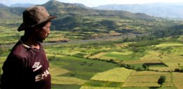 Could Ethiopia make or break the future of GM crops in Africa?