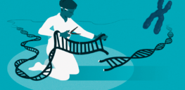 Viewpoint: 'Genetic reductionism' — Why CRISPR is not the answer to every problem