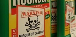 The glyphosate debacle: How a misleading study about the alleged risks of the weedkiller Roundup and gullible reporters helped fuel a cancer scare