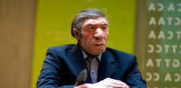 Why did humans survive while our Denisovan and Neanderthal cousins died out? Just one gene could have made all the difference