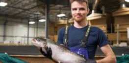 GM fish coming soon: Major US seafood wholesaler will carry AquaBounty's AquAdvantage salmon