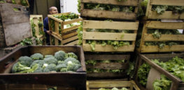 Limited consumer demand could hinder Europe's plans to reach 25% organic food production