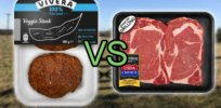 Cattle industry sees real competition in growing alternative meat industry