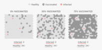 Simulation: Here's how herd immunity works