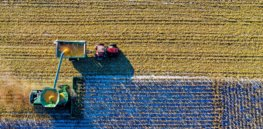 Viewpoint: If the EU is serious about its Farm to Fork goals, it must address massive 'yield gap' between conventional and organic farming. Ag biotechnology is the solution