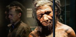 Did Homo sapiens really outcompete Neanderthals? Genetics is rewriting the story of human evolution