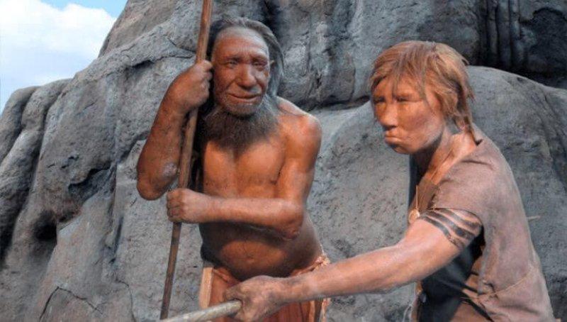 neanderthals effective healthcare compassion x