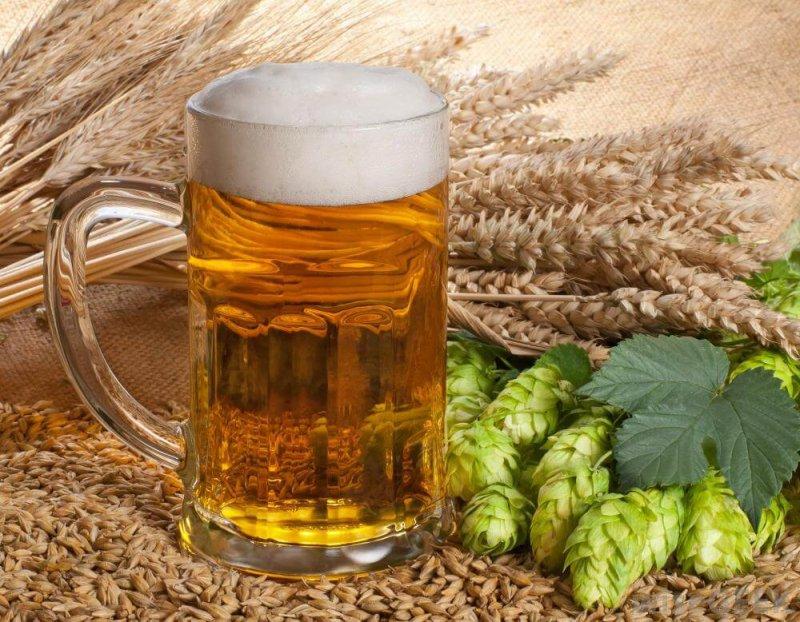 barley prices craft beer