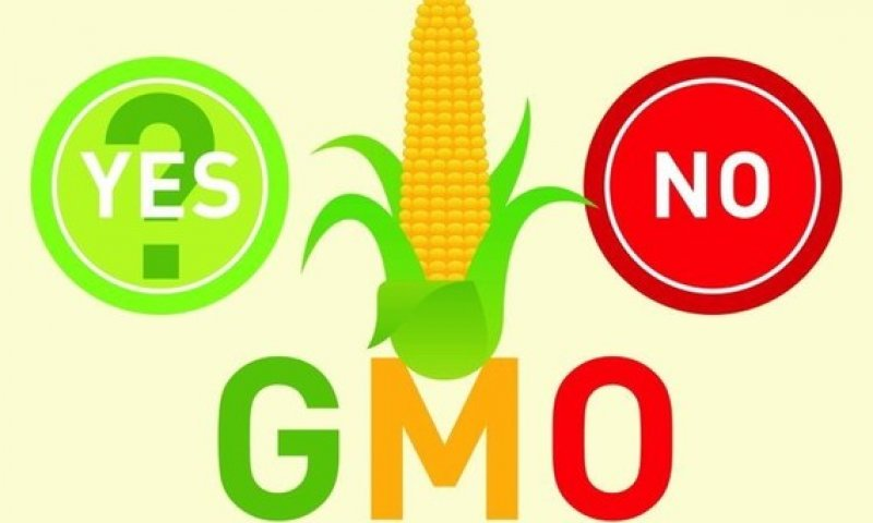 GMO labeling thumb