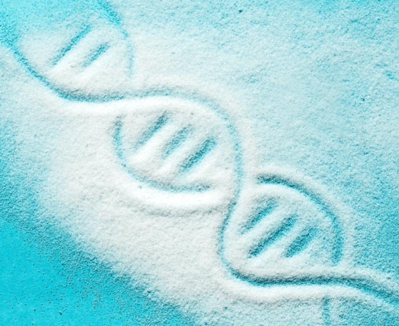 Sugar Genetics ILL DQ homepage