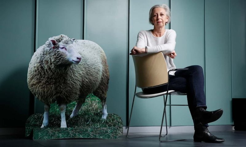 Professor Eleanor Riley, director of the Roslin Institute at the University of Edinburgh. Photograph: Murdo Macleod for the Guardian