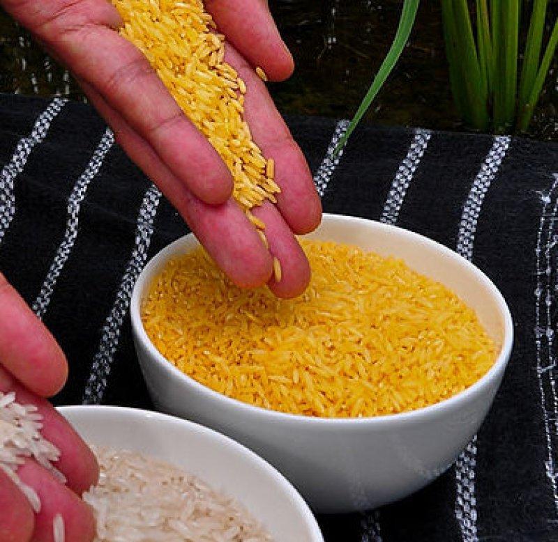px Golden Rice e