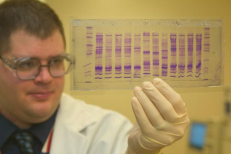 px CBP chemist reads a DNA profile