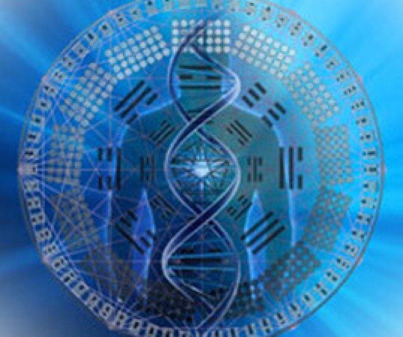 DNA blueprint
