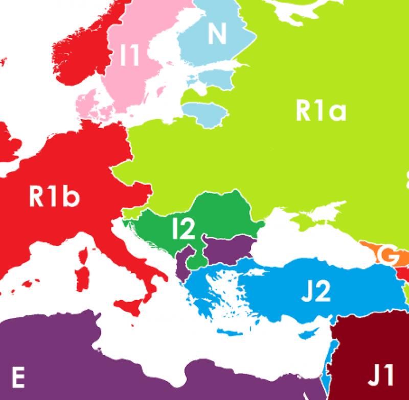 DNA borders