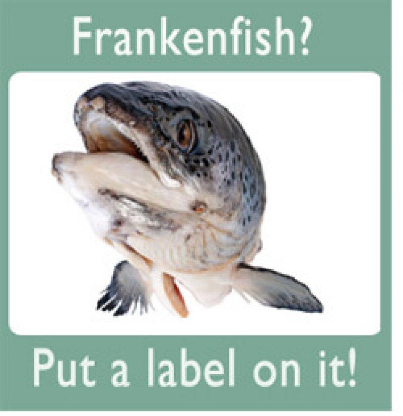 Frankenfish LabelIt green padding x