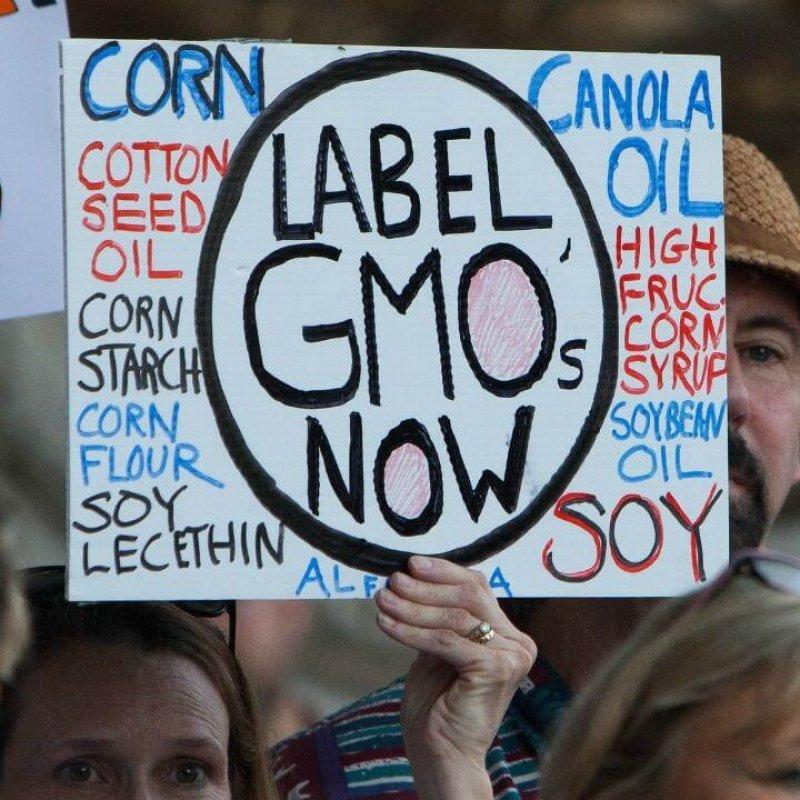 GMO label e