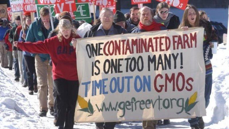 Monsanto x