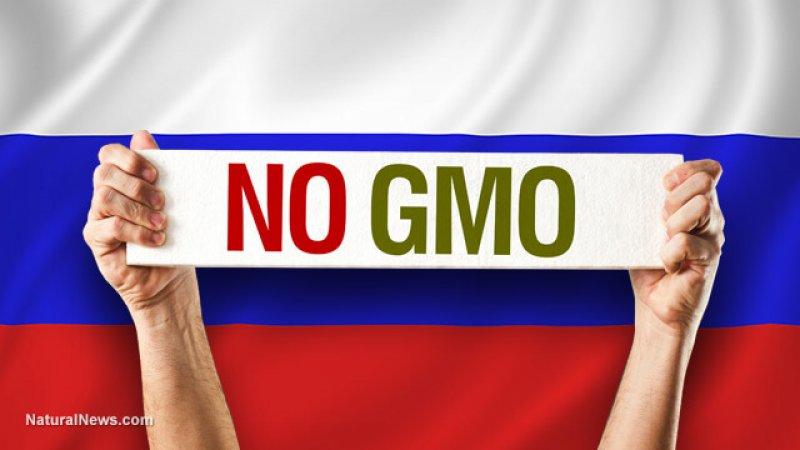 No GMO Flag Russia