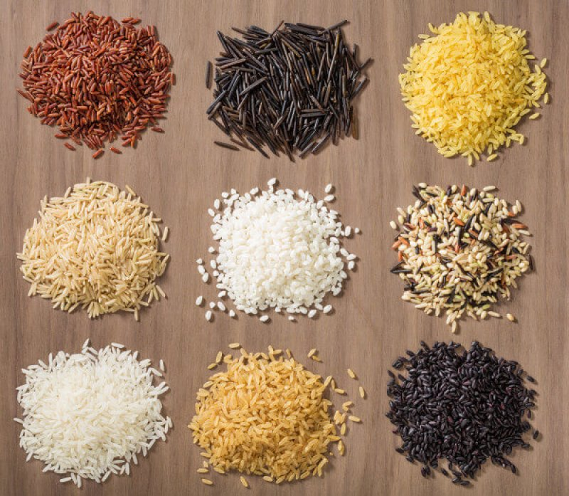 Variety of Rice grains e