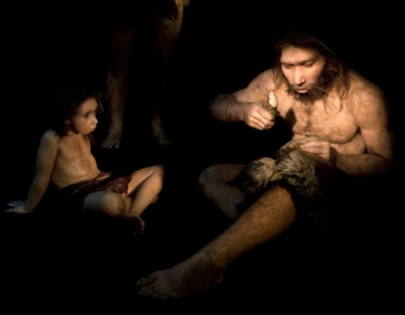 WEB HIGHRES C Neanderthal culture reconstruction SPL