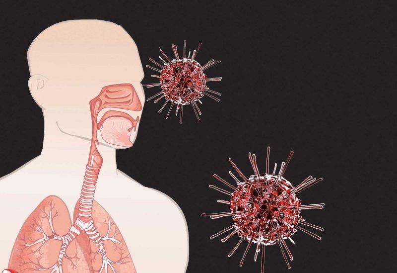 ab fcce e aa a a fa aefcc b coronavirus covid lungs body