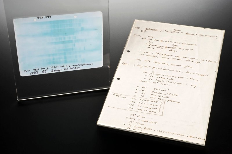 autoradiograph of the first genetic fingerprint wellcome l