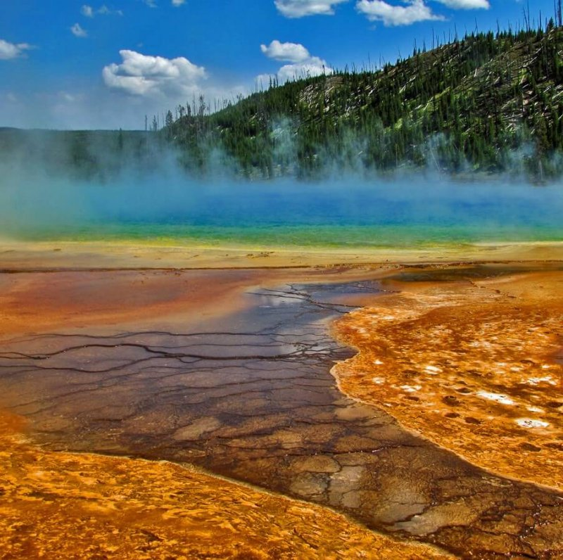 bacterial mats in the grand prismatic spring
