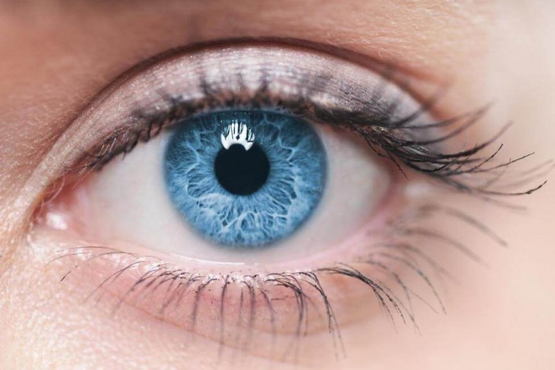 blindness causing genetic defect corrected using crispr