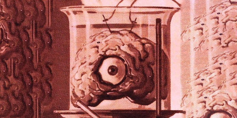 brain sentient