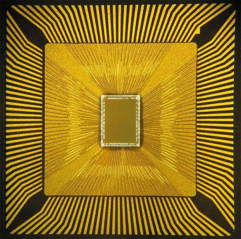 cognitive chip