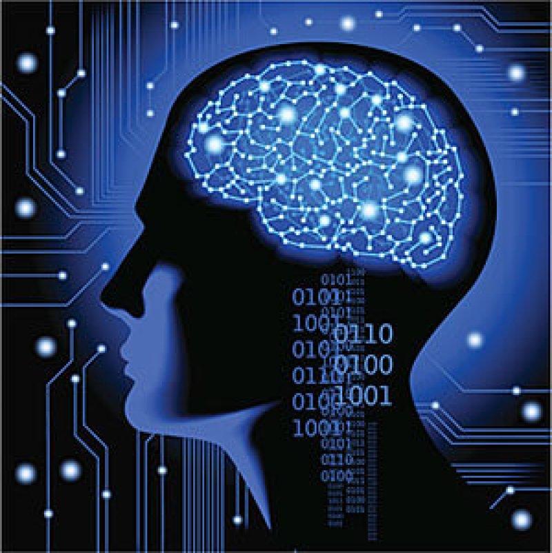 cyber brain web