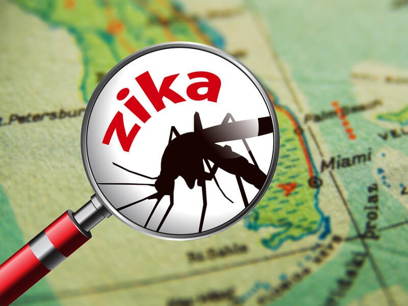 dt florida map zika x