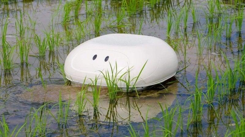 duck robot x