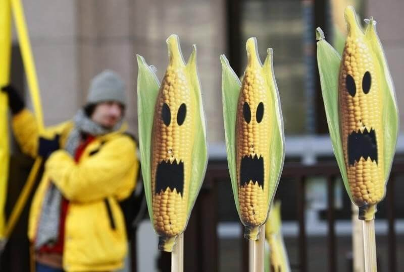 eu moves step closer to law on national gmo crop bans