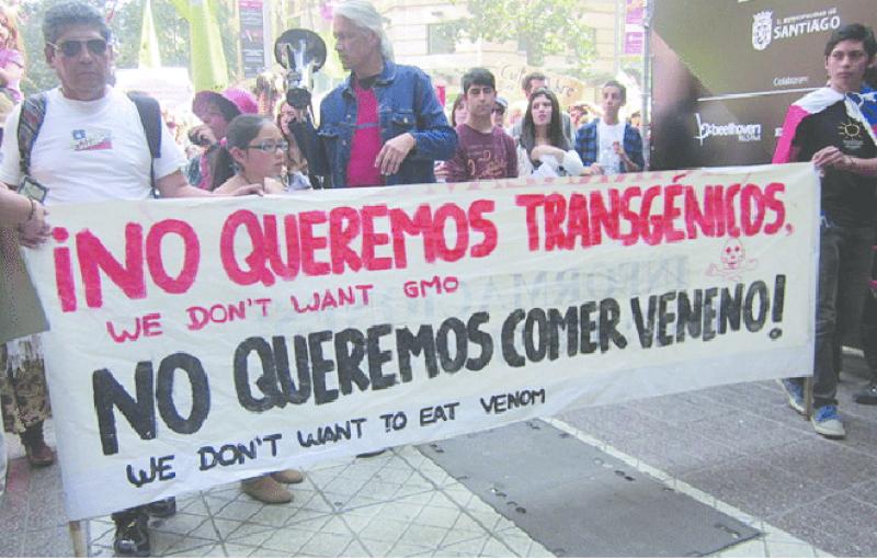 Credit: Mapuexpress Informativo Mapuche