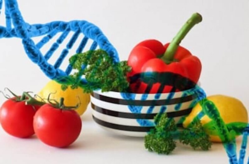 gene edited vegetable