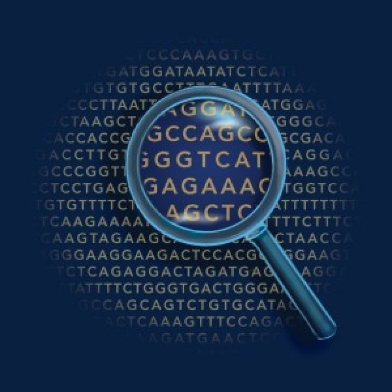 genetic code x