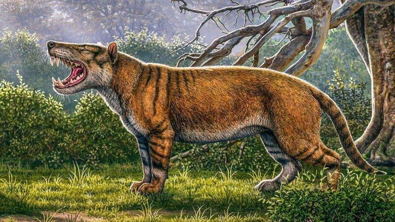 4-24-2019 giantcarnivore