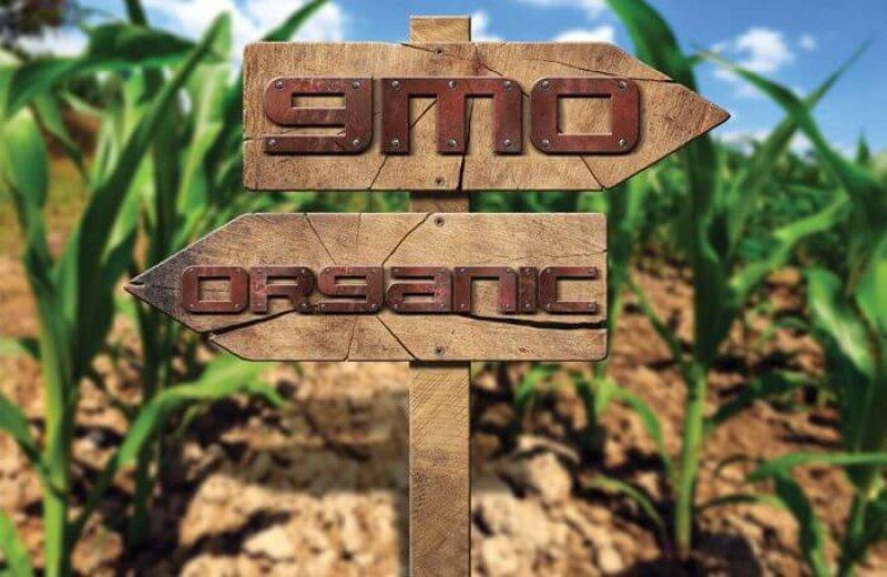 gmo organic sign